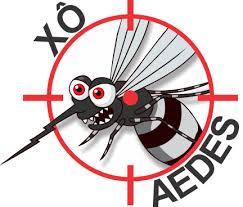 Dengue é principal desafio na saúde pública brasileira