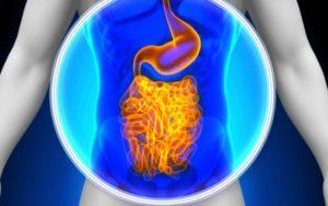 Algumas atitudes que vão melhorar sua saúde digestiva