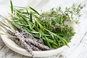 Ervas plantadas em casa podem tratar problemas comuns de saúde!